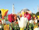 Цветна пролет в Истанбул