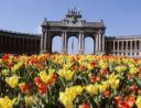 Брюксел с вкус на шоколад и мирис на цветя
